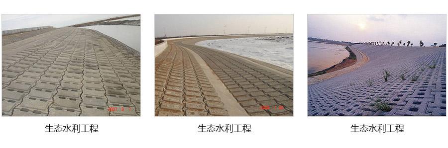 生态水利工程.jpg